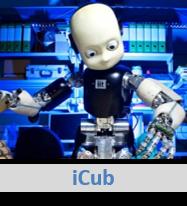 icub1
